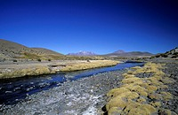 chile, andes, lauca national park, rio ancuta