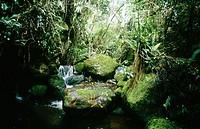Iguaque Sanctuary, Biodiversity Day. Villa de Leyva, Colombia