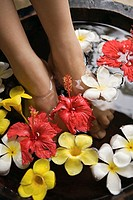 Feet of woman in flower bath