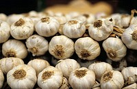 Garlic. Vic market. (Barcelona). Spain.