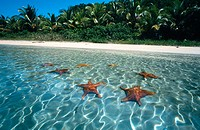 Colon Island. Bocas del Toro. Panama.
