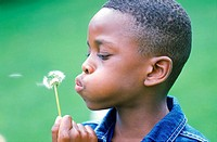 Young boy blowing a Dandelion