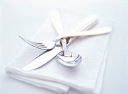 Close Up of a Knife, Fork and Spoon on Folded Napkin