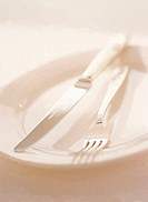 Close Up of a Knife and Fork on a White Plate
