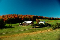 Farm scene with fall foliage &amp; clear blue sky in Caledonia county, Vermont