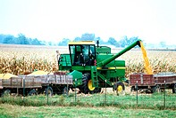Combine uploads corn into wagon in Clinton county , OH
