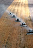 Aerial view of custom harvest combines harvesting wheat, five combines in a role. Wyoming