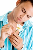 Close-up of a young man plucking flower petals