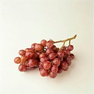 Bunch of red grapes, still life, studio shot, elevated view