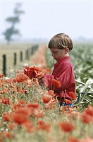Boy (3-5) standing in flower garden, side view