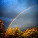 Rainbow with autumnal tree foliage and stormy sky