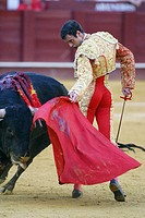 Bullfighter Finito de Cordoba