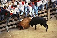 ´La Cargolera´, Correbou de Cardona. Cardona, Bages, Barcelona province, Spain