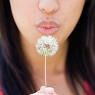 Close up of lower half of woman's face blowing dandelion
