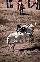 Rodeo Truckee California USA