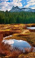 Tuolumne Meadows Yosemite National Park California USA
