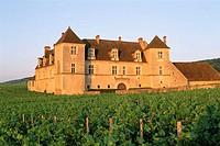Chateau du Clos de Vougeot Burgundy France