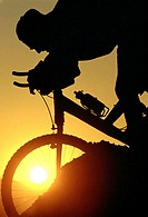 Silhouette of person mountain biking