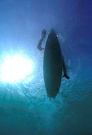 Low angle view of a person surfing in the sea