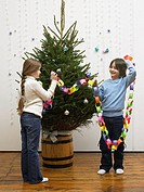 Brother and sister decorating christmas tree