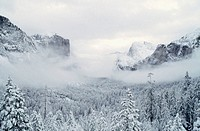 Fog over snowcovered mountains and trees, Yosemite National Park, Mariposa County, California, USA