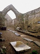 Ruins of an Abbey, Waterford, Ireland