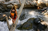 Female hiker crossing single log bridge over rushing creek on trail to Van Trump Park in Mt. Rainier National Park, Washington, USA