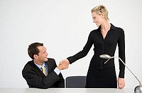 Handshake between two office workers