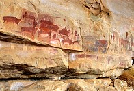 africa, kwazulu natal, drakensberg, kamberg national reserve, bushman paintings