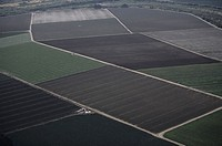 Farm fields, aerial view