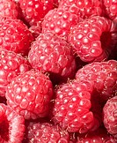 Raspberries (Rubus idaeus), close-up