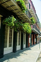 Hanging baskets on a building, New Orleans, Louisiana, USA