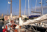 France, Corsica, Saint Florent, sailboats in harbour