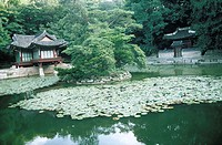 South Korea, Seoul, Changdokkung palace, the Secret garden