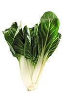 Swiss chard