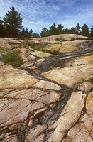 Pre-Cambrian-Rock-of-Canadian-Shield,-Killbear-Prov.-Park,-Ontario,-Canada