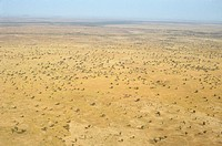Sahel-Burkina-Faso