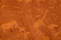 Bushman-Engravings,-Twyfelfontein,-Namibia