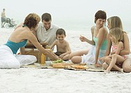 Group having picnic on beach
