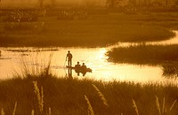 Tourists-in-a-Mokoro,-Okavango-Delta,-Botswana