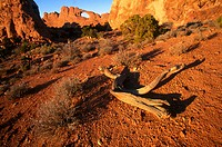 Skyline arch. Natural arch out of rock at sunset. Arches NP. Utah. USA