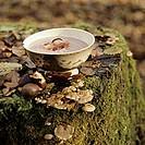 Chestnut soup bacon on tree stump