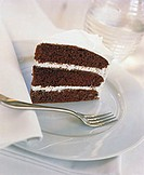 A piece of chocolate sponge gateau with cream filling