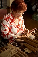 Senior woman making cigars in cigar factory
