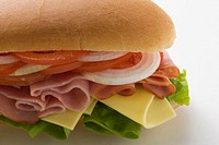 Ham, cheese, tomato and onion in sub sandwich