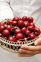 Hands holding basket of cherries