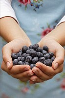 Hands holding fresh blueberries
