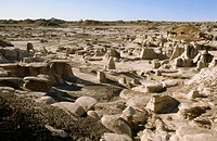 Geological formations. Bisti Badlands Wilderness Area. New Mexico. USA