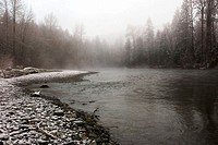 The Cowichan River. Vancouver Island, British Columbia, Canada, 11 March 2006