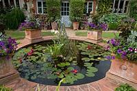 Garden Pond landscape
